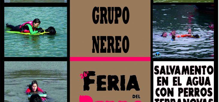 EXHIBICIÓN FERIA DEL PERRO DE TINEO